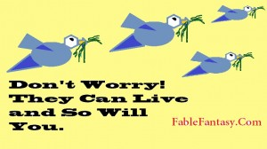 Interesting Short Fable Story Free Bird Pics